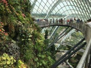 8階建てくらいある屋内植物園…近未来な感じ